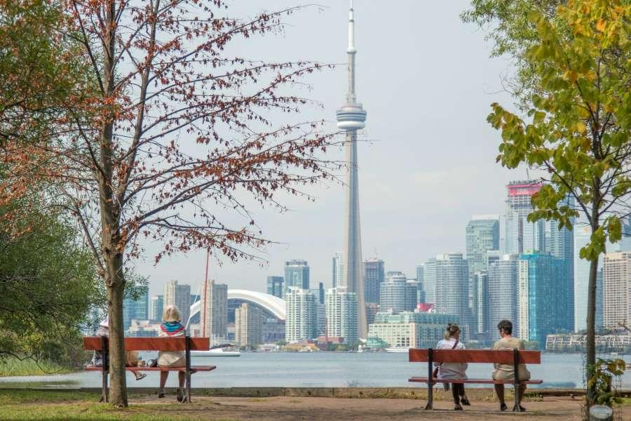 Toronto Seo Marketing Agency